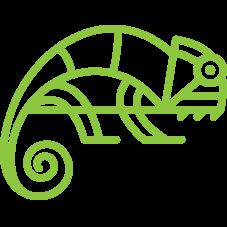 Code Chameleon Icon
